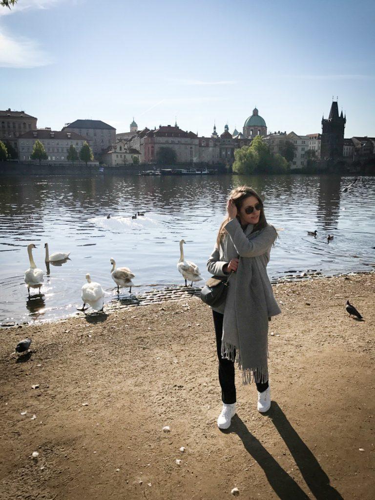 vue_pont_Charles_Prague_rosesinparis