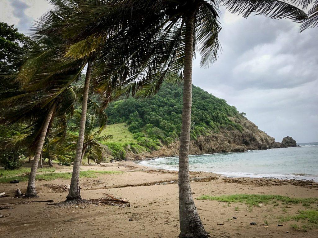 Anse_du_Figuier_Saintes_Guadeloupe