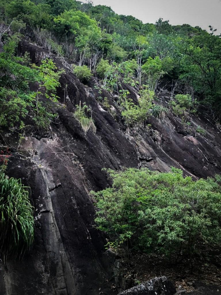 sur_le_chemin_randonnee_Saintes_Guadeloupe
