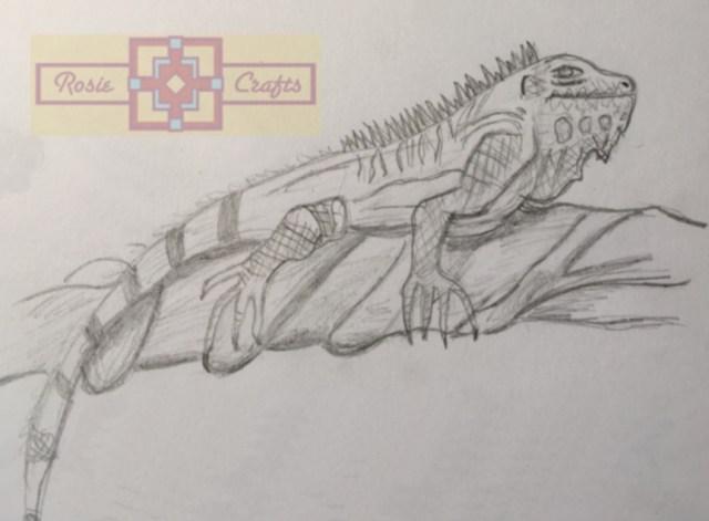 Rosie Crafts Iguana Drawing