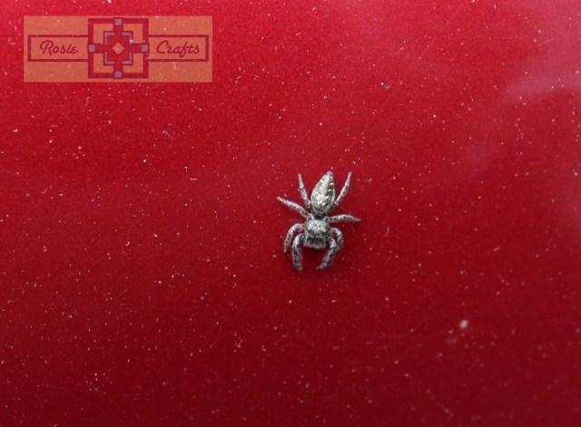 Rosie Crafts Spider Photography