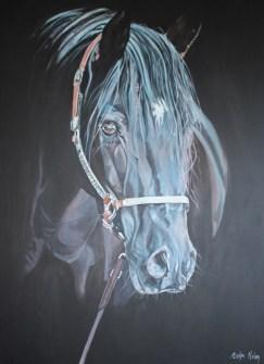 Dark Horse_92cmx122cm_Acrylic