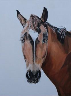 Outback Stockhorse Final_92cmx122cm_Acrylic_$3,200