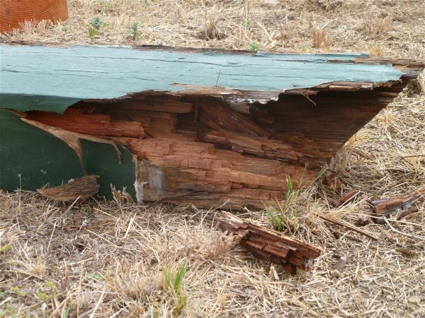 Rotted beam 2