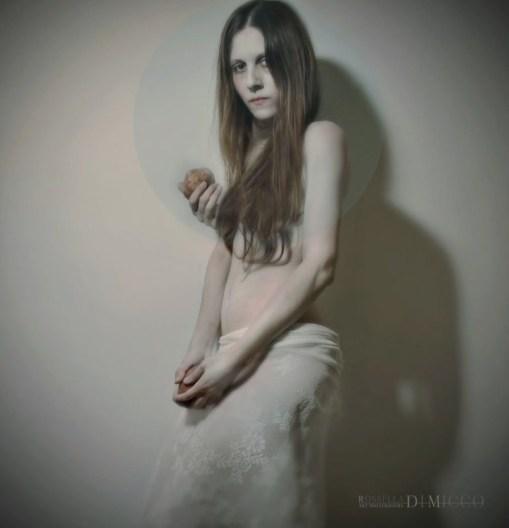 Synechia - The stranger