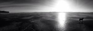 Frozen Lake Champlain by Bill Amadon, March 13, 2015