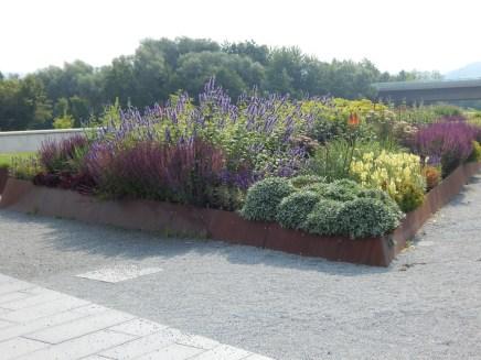 Beet in den Deichgärten am Landesgartenschau-Gelände