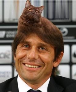 conte_gatto