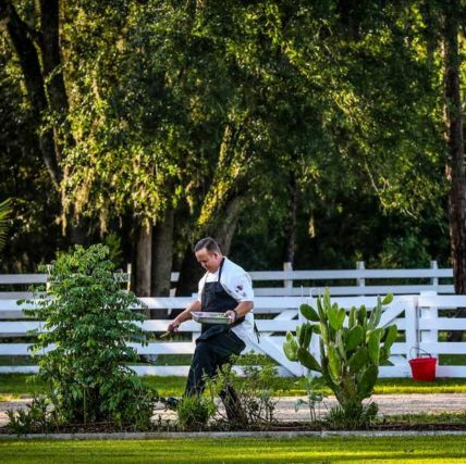 Rosy Tomorrows redefines farm to table in Florida