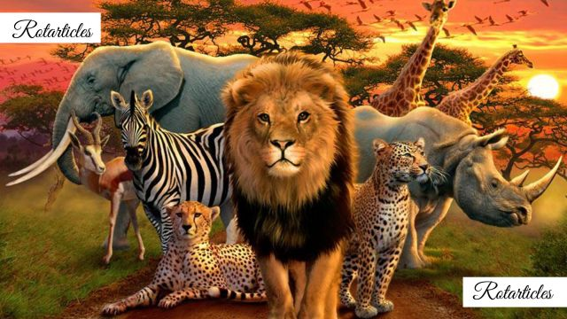 Wildlife The Blessing of Pakistan