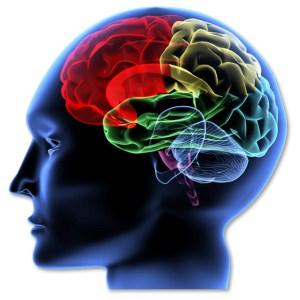 how brain learns golf swing