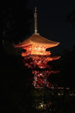 Japan 017