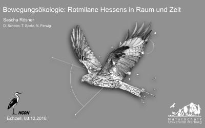 Arbeitsgruppe Greifvögel & Eulen der HGON e.V.