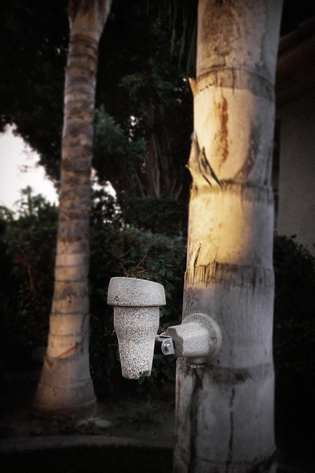 Palm Tree Spot Light Amp Mount Roto Lite Inc Led