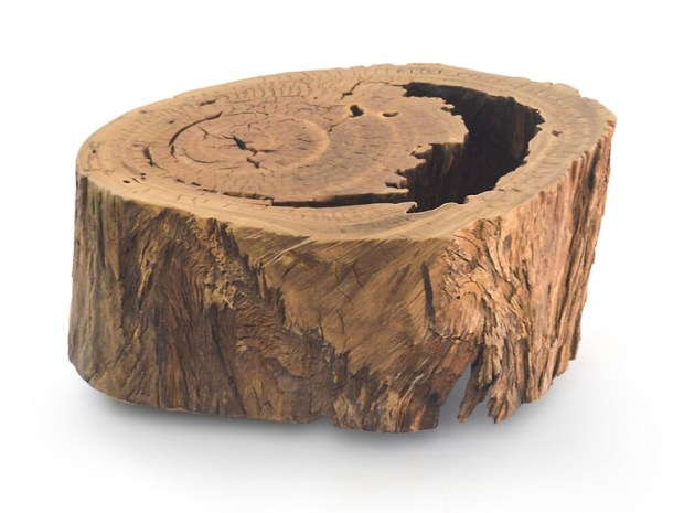small-bahia-pequi-trunk-coffee-table-2