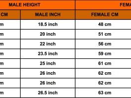 Rottweiler Growth Chart -Rottweiler Height Chart -Rottweiler Weight Chart