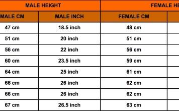 Rottweiler height and weight chart