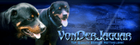 GERMAN ROTTWEILERS QUALITY ROTTWEILER PUPPIES FOR SALE.png