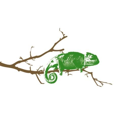 vinilo decorativo camaleon