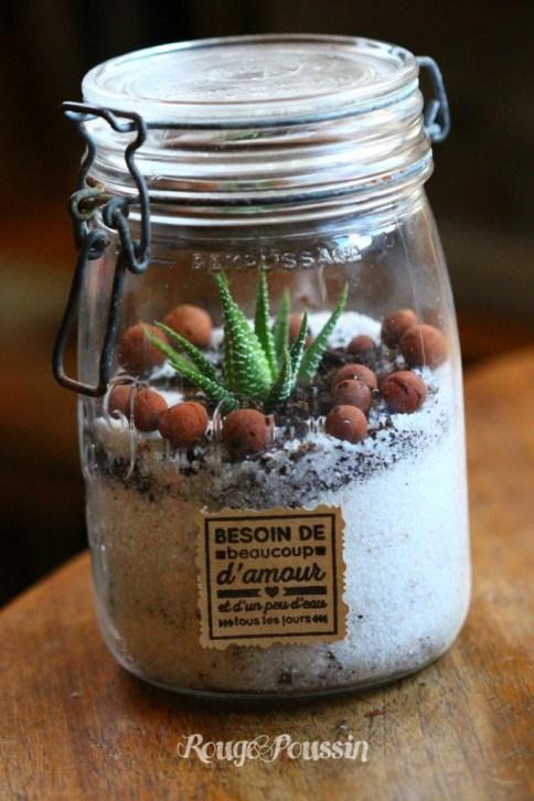 Idée cadeau : réaliser un mini-terrarium dans un pot
