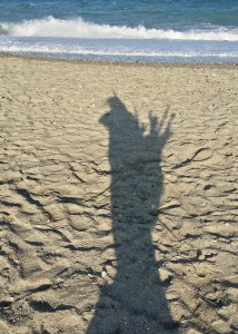 Ramasser du bois flotté sur la plage