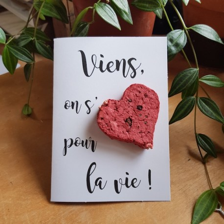 """Carte à offrir avec un coeur ensemencée où l'on peut lire :""""Viens on s'aime pour la vie"""""""