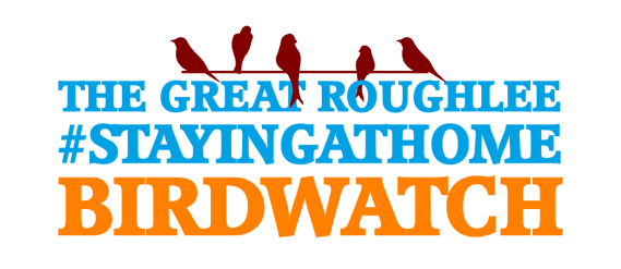 The Great Roughlee #Stayingathome Birdwatch