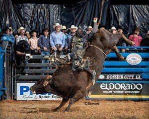 Sage Kimzey buzzes past Bumble B (Whisnant/Shaw) for 90 points at the Eldorado Shreveport Tuff Hedeman Bull Riding presented by Landers Dodge