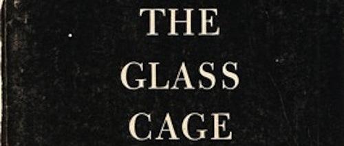 GlassCageBook