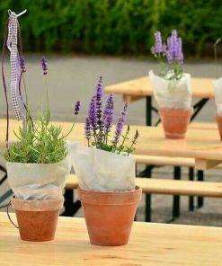 Biertischgarnituren mit Blumen