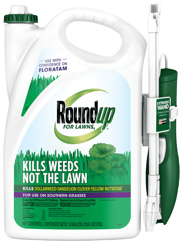 Best Weed Killer For Floratam Grass