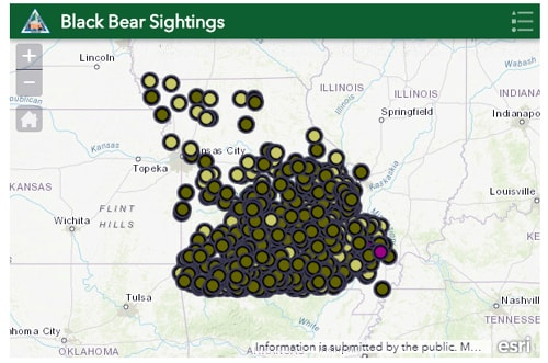 Black Bear Map Missouri Min Route 66 News