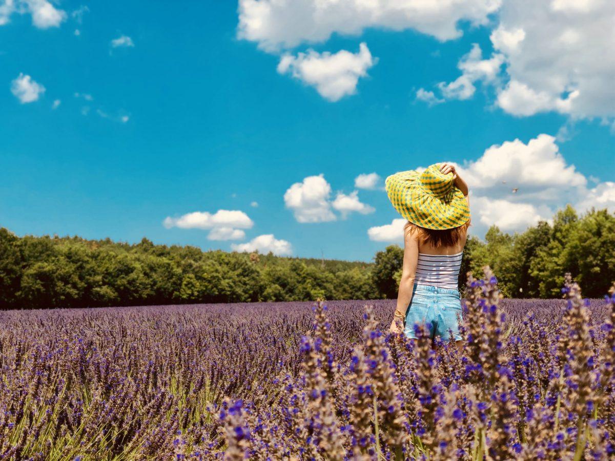 Femme au chapeau dans un champ de lavande