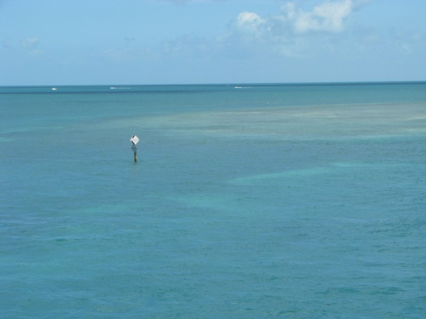 Sea view from the US1, Florida Keys