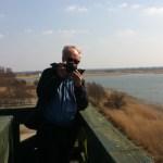 Bird-watching, Lake Lebsko, Slowinski National Park