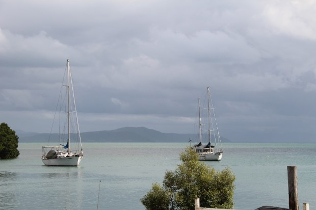 Port Douglas harbour