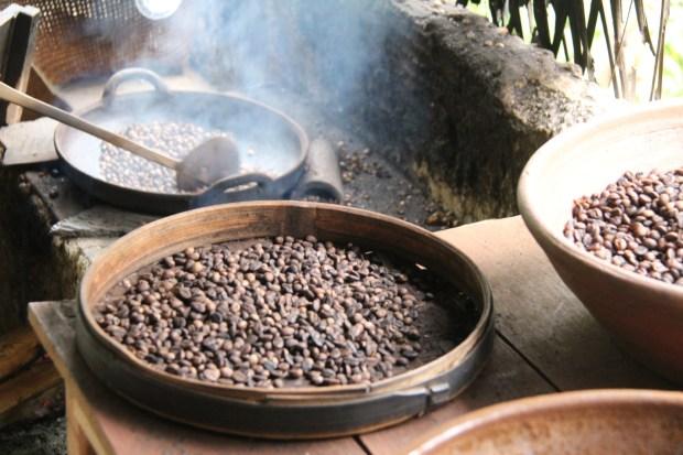 Central Bali day trip: coffee roasting