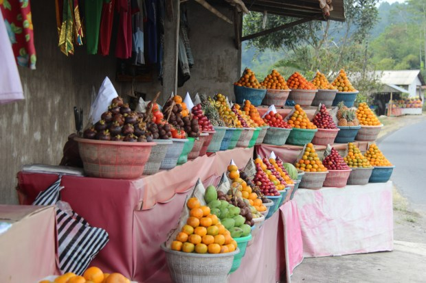 Fruit stall along mountain road, drive in Central Bali