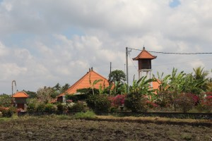 Lush Bali countryside, drive in Central Bali