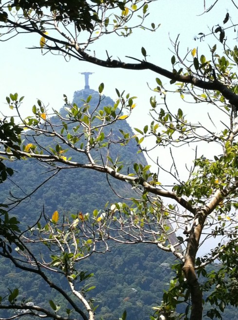 Christ the Redeemer from Parque National da Tijuca