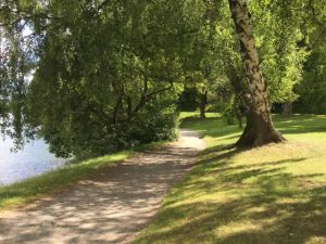 Stockholm nature tour by bike, the bike road