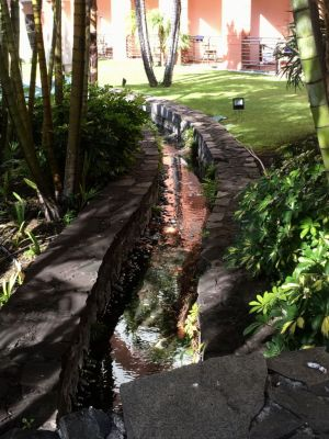 Royal Savoy Funchal garden and levada