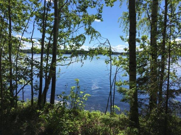 Loukkuvuori trail at Enonranta, Southern Konnevesi National Park