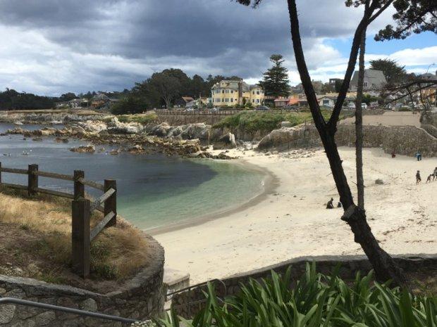 San Francisco to Monterey: Pacific Grove