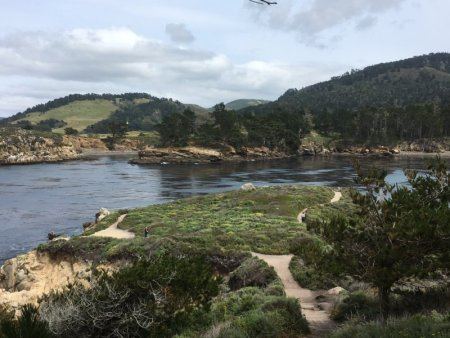 Point Lobos State Natural Reserve hiking track