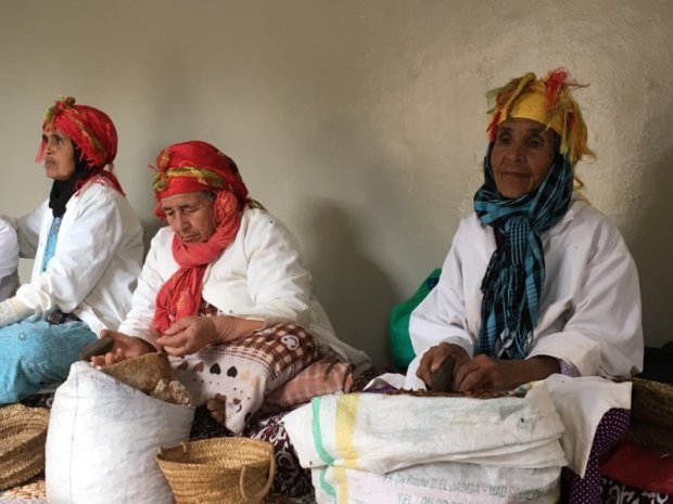 Moroccan women producing argan oil