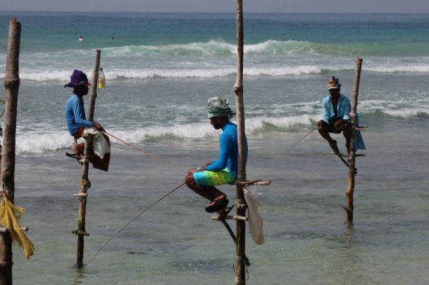 Ahangama stilt fishers, Sri Lanka