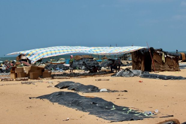 Negombo fishing harbor