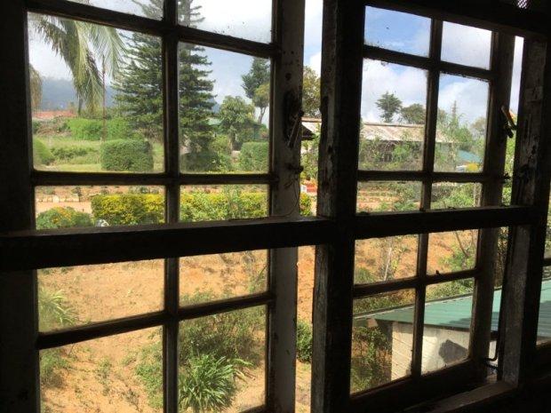 Window of Liddesdale tea factory