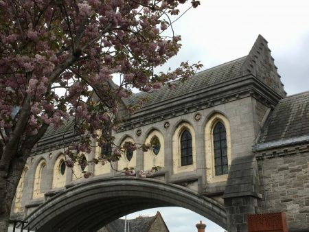 Christ Church Cathedral, self-guided Dublin walking tour
